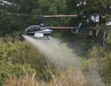 ISG spraying