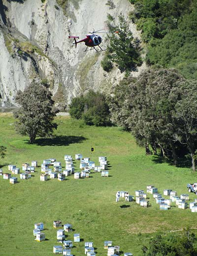 Lifting bee hives