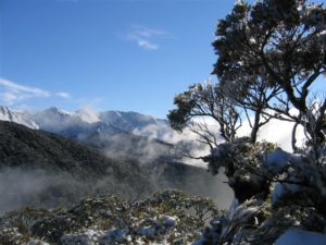 Snowy scene in the Tararuas